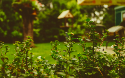 5 conseils pour l'aménagement d'un jardin extérieur où il fait bon se détendre